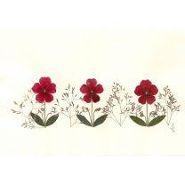 Blütenkarte - Klappkarte mit Einlage