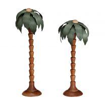Palmen, grün - 2 Stück, Höhe: 11cm und 14cm